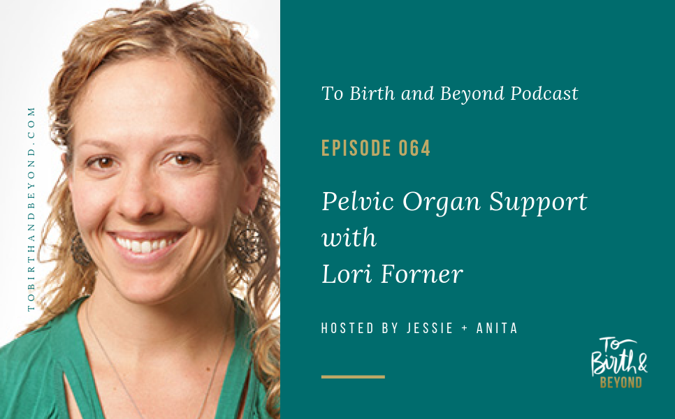 Episode 64: Pelvic Organ Support with Lori Forner