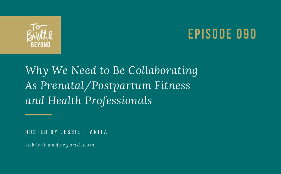Episode 90: Why We Need to Be Collaborating As Prenatal/Postpartum Fitness and Health Professionals